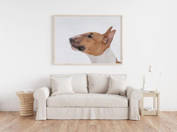 visar hundbild på vägg i vardagsrum